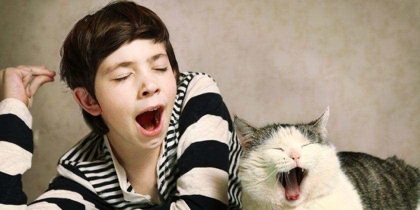 Un niño y un gato bostezan